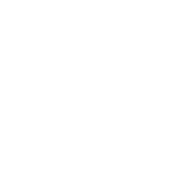 logo of icon at double resolution